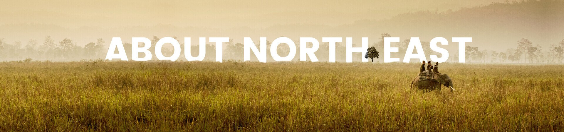 About North East